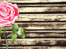 Wood background with watercolor rose Royalty Free Stock Photography