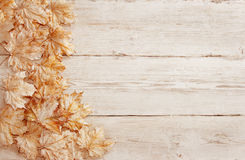 Wood Background White Leaves, Wooden Grain Texture, Plank Leaf Royalty Free Stock Image