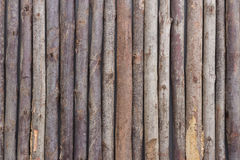 Wood background & x28;wood, table, wooden& x29; royalty free stock images