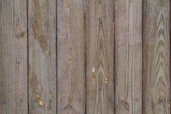 Wood background Royalty Free Stock Photos