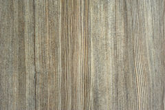 Wood Backgrounds Stock Image