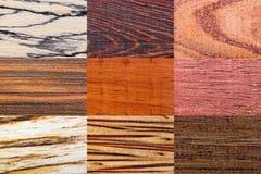Wood backgrounds set Stock Images