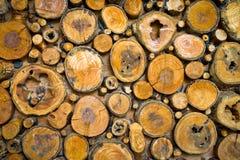 Wood bakgrund Arkivfoton