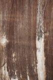 Wood bakgrund Arkivbild