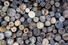 Wood bakgrund Arkivbilder