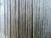 Wood bakgrund Royaltyfri Fotografi