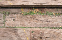 Wood bakgrund med gräs Royaltyfri Bild