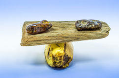 Wood Balance With Bits Of Amber Royalty Free Stock Photo