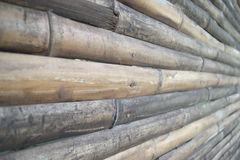 Wood Bamboo Background Stock Photo