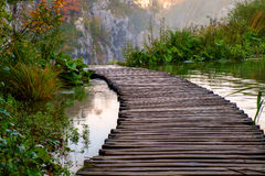 Wood bana i den Plitvice nationalparken i höst Arkivbild