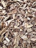 Wood Bark Chippings. Background pattern stock image