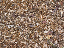 Wood, bark and sawdust Royalty Free Stock Photo