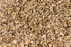 Wood barking mulch texture background. Closeup of wood barking mulch Royalty Free Stock Photos