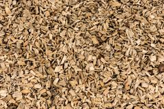 Wood barking mulch texture background. Closeup of wood barking mulch Stock Photos