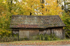 Wood barn in autumn Stock Image
