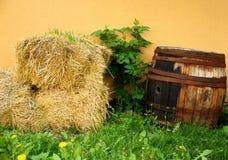 Wood Barrel with Straw Blocks. Wooden Vine Barrel Next to the Straw Blocks Stock Photos