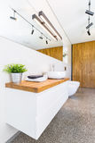 Wood in bathroom. Trendy interior in modern house Stock Photography
