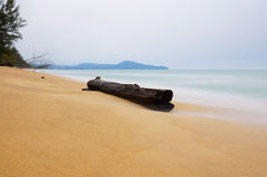 Wood On The Beach Stock Photography
