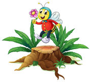 A wood with a bee holding a flower Stock Photo