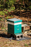 Wood Beehouse in Forest Stock Images