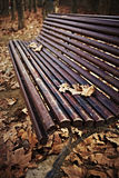 Wood bench with autumn leaves Stock Images