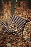 Wood bench with autumn leaves Stock Photos