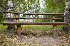 Wood bench in forest Royalty Free Stock Photo