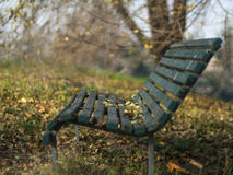 Wood bench. In a garden stock images