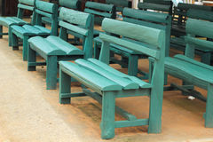 Wood bench green a lot Royalty Free Stock Photos