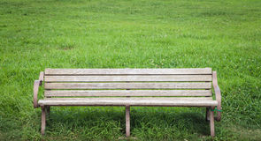 Wood bench at green park in summer Stock Photo