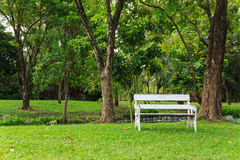 Wood bench in green park Royalty Free Stock Photos
