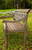 Wood Bench In Garden Royalty Free Stock Image