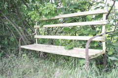 Wood bench. In nature royalty free stock photography