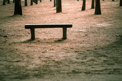 Wood bench at outdoor Royalty Free Stock Image