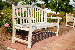 Wood Bench in a Public Rose Garden Royalty Free Stock Images