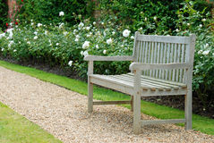 Wood bench in rose garden Royalty Free Stock Image