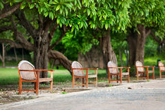 Wood bench under tree Stock Photos