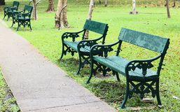 Wood bench. In the Gardens stock photography