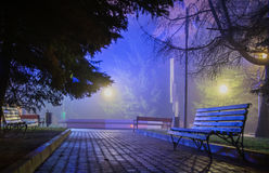 Wood benches in the night park Stock Images