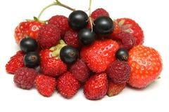 Wood berries Royalty Free Stock Photos