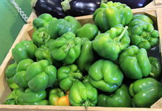 Wood bins of fresh green peppers and purple eggplants Royalty Free Stock Images