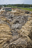 Wood and biomass plant. Pile of wood for combustion in a biomass boiler Stock Photos
