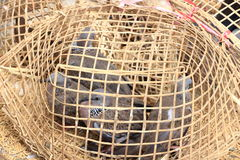 Wood bird cage Royalty Free Stock Photography