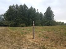 Wood bird feeder or house on pole in field with grass. And trees royalty free stock image