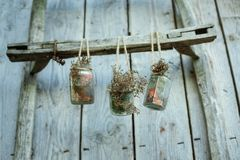 Wood, Bird Feeder, Twig Stock Photo