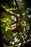 Wood Birdhouse Stock Image