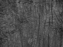 wood black is a background stock photography