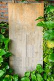 Wood blank signboard with plant leaves cover standing on cafe Stock Image