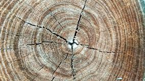 Wood block texture. Background stock images