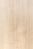 Wood blonde texture Royalty Free Stock Images